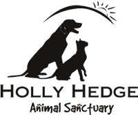 logo-holly-hedge.png